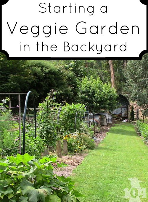 Are You Ready To Start Your Backyard Veggie Garden Gardens The O 39 Jays And Vegetables