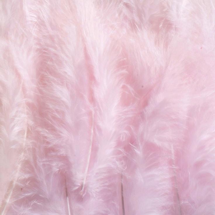 Light pink, shell colour,soft texture
