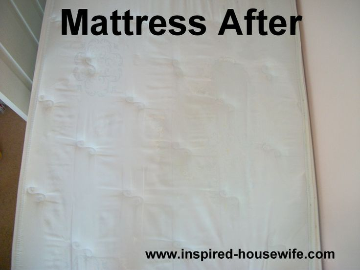 Mattress Pee Stain Removal