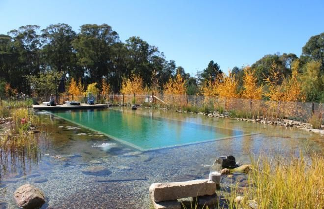 Concrete pools albury wodonga natural swimming pool natural pools australia biotop pools bio for Natural swimming pool australia