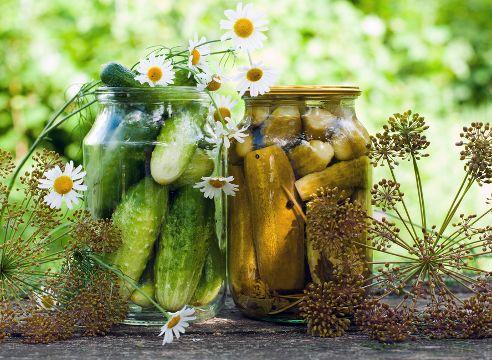 Соленые, консервированные огурцы: 8 проверенных рецептов