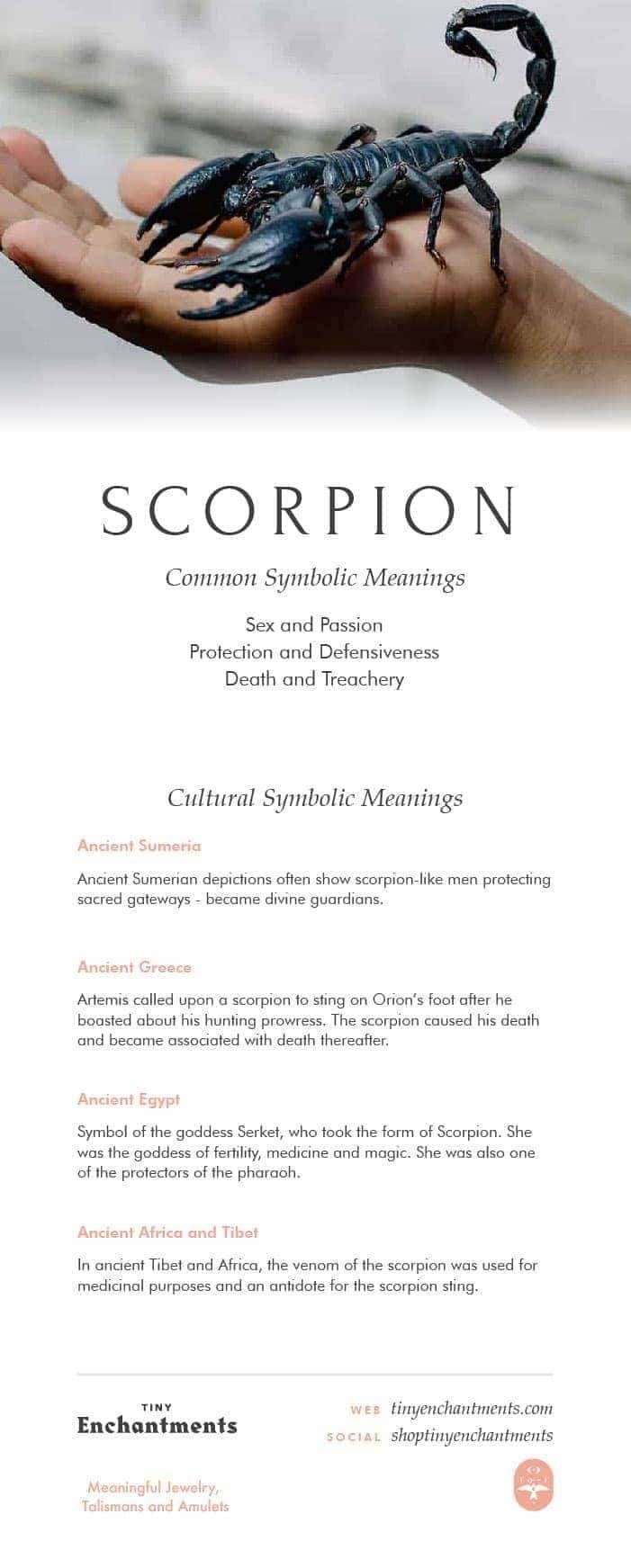 Scorpion Symbolism - Scorpion Dream Meaning, Scorpion Mythology and  Scorpion Spirit Animal Meanings Full Infographic: spirit animal, animal  guide, ...