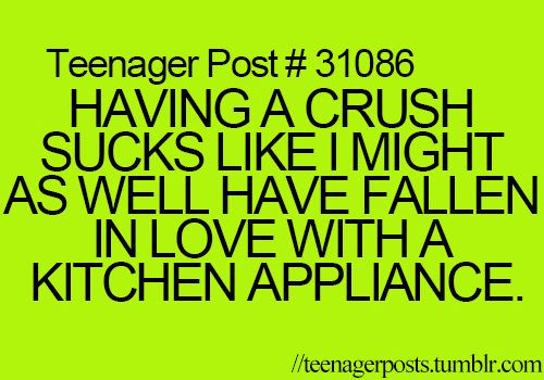 Having a crush sucks. Like, I might as well have fallen in love with a kitchen appliance.