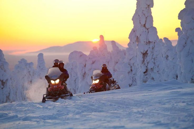 Activiteiten en excursies vanuit Scandic Luosto Lapland   Voigt Travel