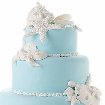 GUM PASTE SEA SHELL KIT from Pastry Chef CentralSea Shells, Gum Paste, Tiffany Blue, Beach Cake, Cake Ideas, Beach Theme, Wedding Cakes, Seashells, Beach Wedding