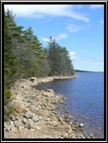 The beauty of Long Lake Provincial Park lies not only in the nature and sense of being in the wilderness, but also in its location that is a... http://www.mervedinger.com