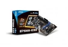 Carte mere msi B75MA-E33 micro atx pas de processeur