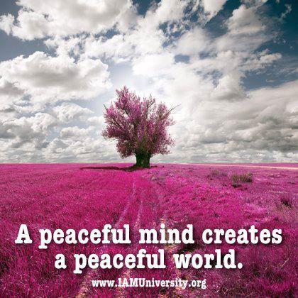 Meditation ~ A peacefull mind creates a peacefull world