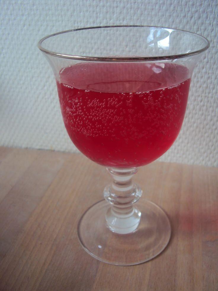 Pink hyldeblomstsaft - Lowcarb.dk