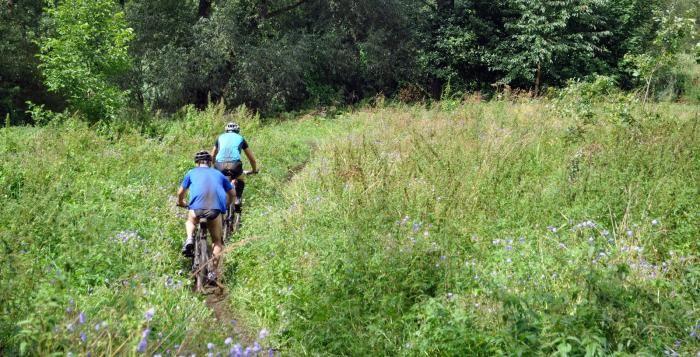 Plzeň chce dokončit další cyklostezky, jedna by měla vést i kolem ZOO