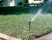 The Right Way to Water Your Lawn - Lawn Care Issues