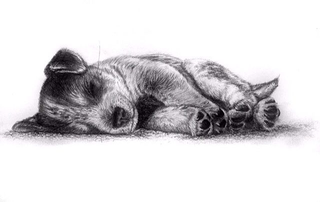 how to make pencil drawings look real