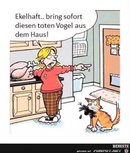 Hausbau karikaturen  Die besten 20+ Lustige karikaturen Ideen auf Pinterest ...