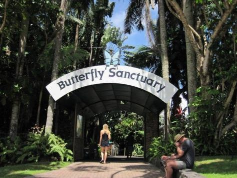 Kuranda Butterfly Sanctuary- sad we didnt do this. Reason # 8283849392 to go back
