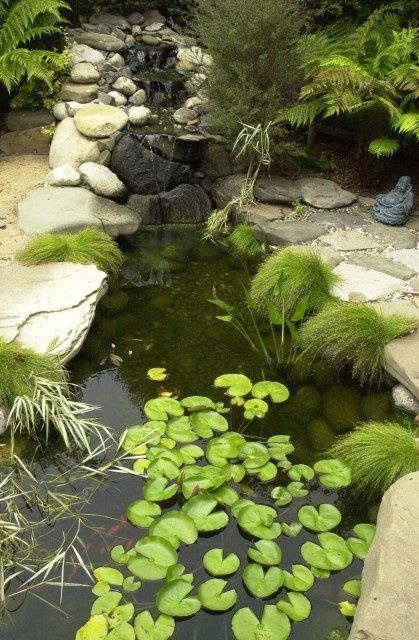 405 Best Koi And Ponds Images On Pinterest Koi Ponds