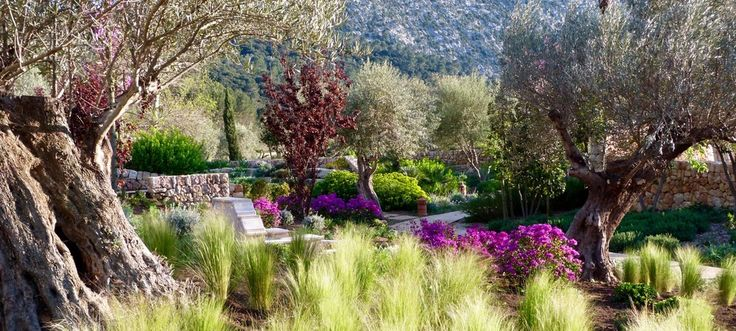 Large Country Estate - Pollença, Mallorca by Contemporanium #gardendesign #Mallorca #Contemporanium