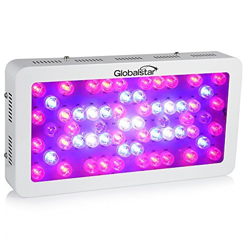 Special Offers - Global Star Led Grow Lights Panel Full Spectrum Led 60x6W for Plants Indoor Greenhouse Hydroponics - In stock & Free Shipping. You can save more money! Check It (January 05 2017 at 07:29AM) >> http://growinglightfixtures.com/global-star-led-grow-lights-panel-full-spectrum-led-60x6w-for-plants-indoor-greenhouse-hydroponics/