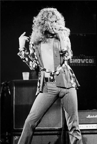 Robert Plant of Led Zepplin. I think I could pull it off. Curl my hair, stuff a few socks in my jeans. I got this.