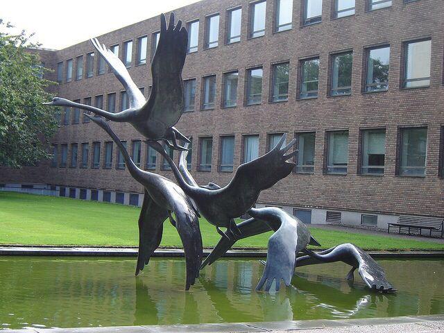Swans Take Flight - David Wynne