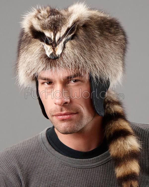 Coonskin Hat: 33 Best DIY Fox Hat & Other Images On Pinterest
