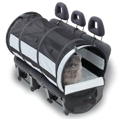 """Might need this if I move cross country... Cat """"travel tube"""""""