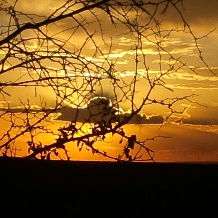 Sunset Northern Cape