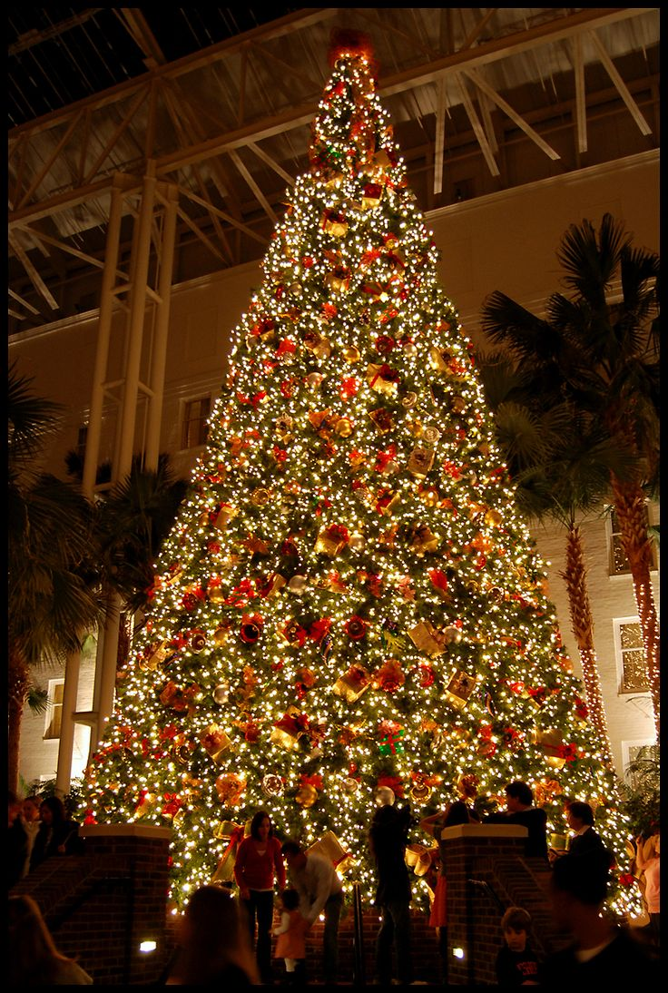 Christmas at The Gaylord Opryland Hotel, Nashville-- Been there & the lights are lovely. December 2012