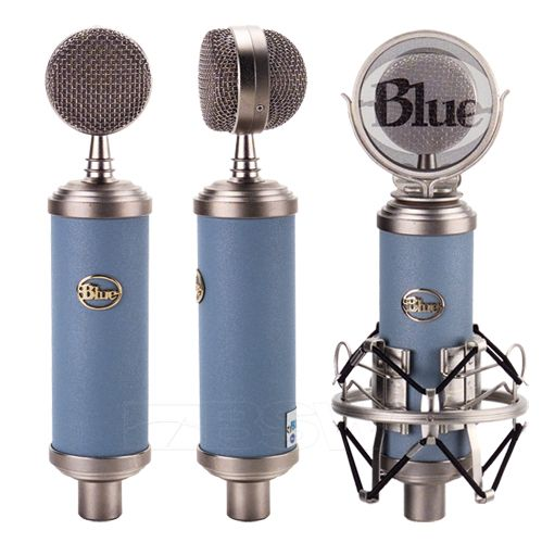 I use my Bluebird for everything! Voice-overs, vocals, acoustic guitars... the list goes on.