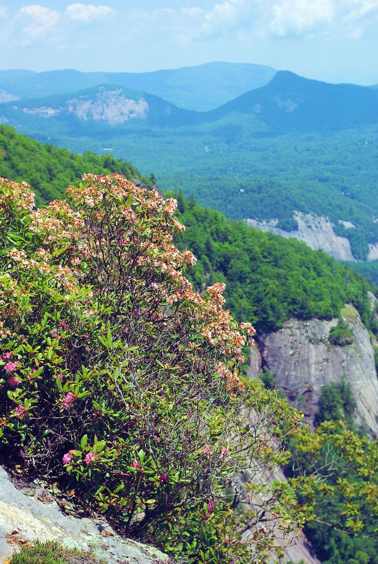 31 best Honeymoon images on Pinterest   Appalachian trail, Franklin ...