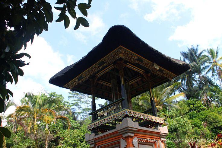 http://baliwellnessretreat.com/the-Balinese-Water-Purification-Ceremony/