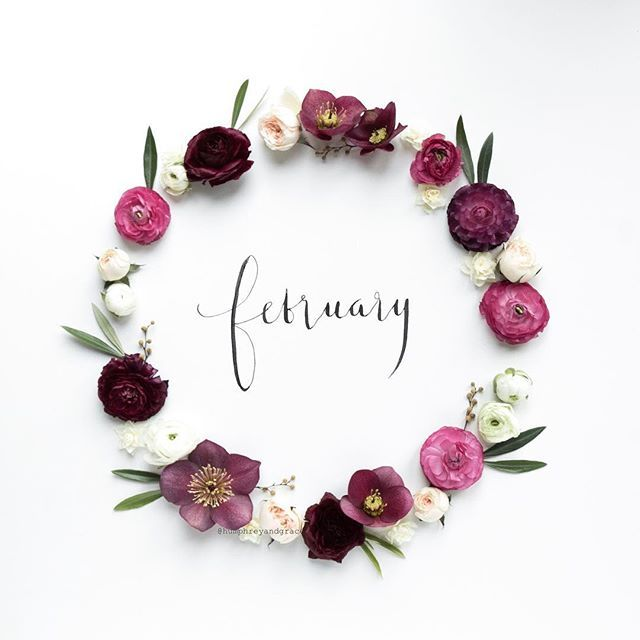 Hello February! Here's to a good one x #hellofebruary