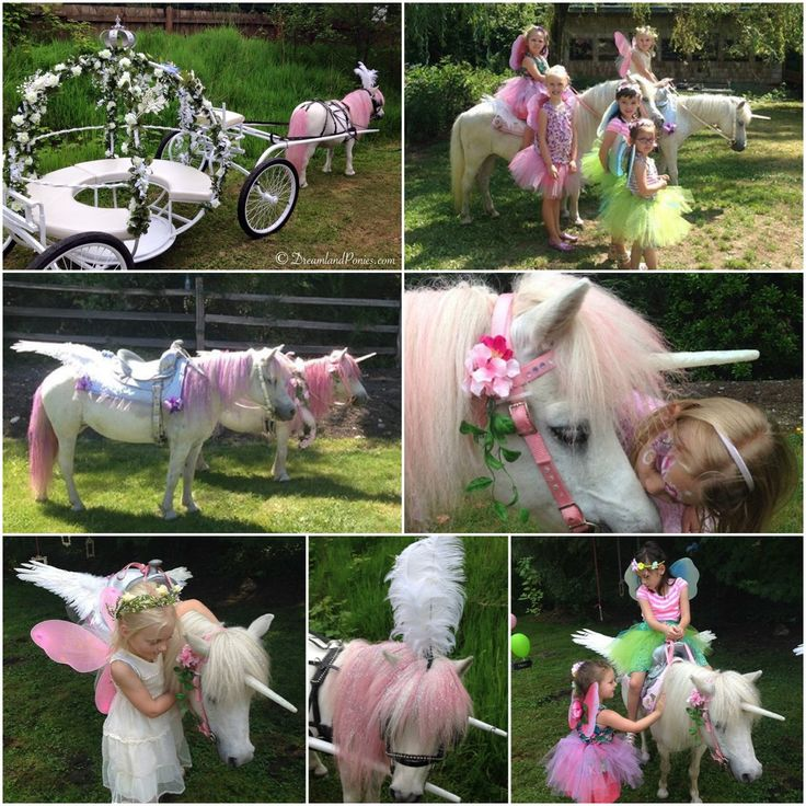 Pin By Dreamland Ponies On Pony Party Themes Pony Party Theme Horse Party Pony Party