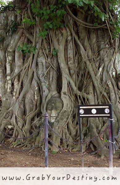 Temples and City of Ayutthaya - Phra Nakhon Si Ayutthaya #Thailand #JasonAndMichelleRanaldi  #GrabYourDestiny #Ayutthaya #Travel www.GrabYourDestiny.com