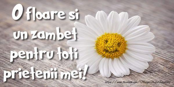 O floare si un zambet pentru toti  prietenii mei!