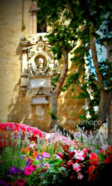 Aix en provence flower market: Things French, Marketing Aix, Aix En Prov France, Flowers Marketing, Provence Flowers, Travel, France Magnifique, Flower Market, Aix En Provence France