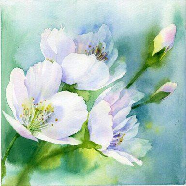 Aquarelle de fleurs blanches sur fond bleu