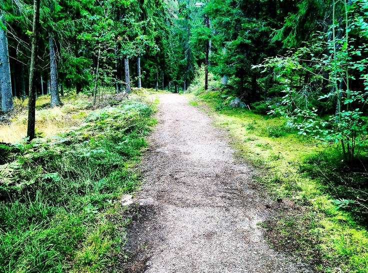 Hike in Tingsryd, Sweden #peacelovewanderlust