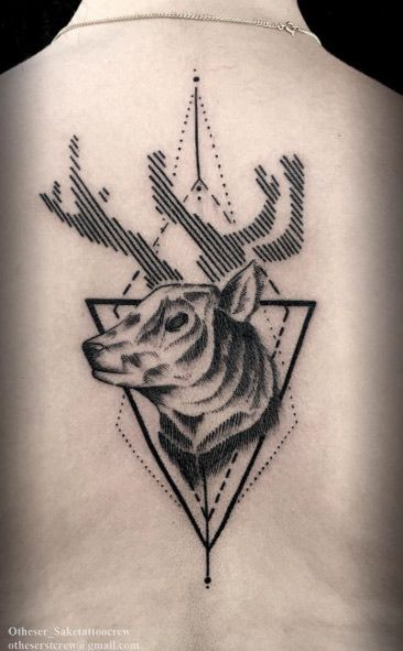 Stag with cool antlers by Darkside
