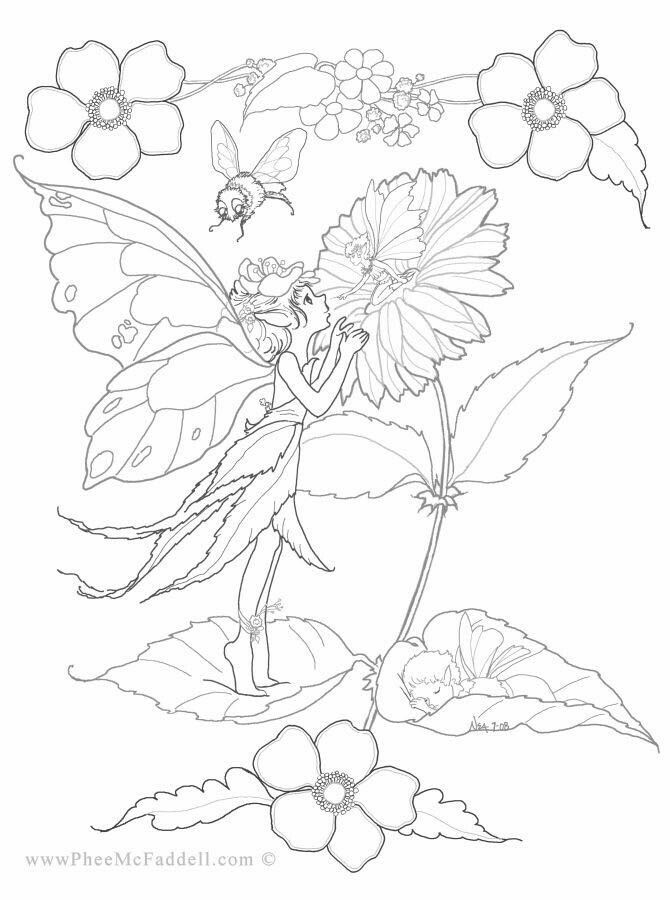 all sizes shapes and colors fairy coloring page - Coloring Pages Fairies Flowers