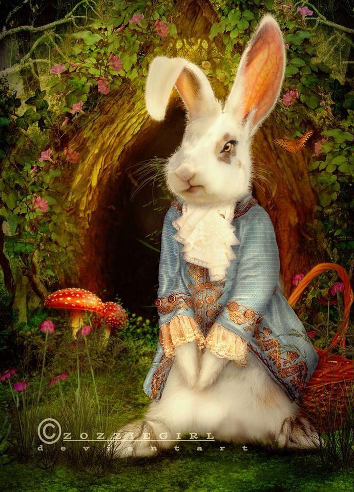 если кролики фэнтези картинки население отсутствует