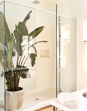 Breezy Caribbean Style:  Fitting with the light Caribbean style of the whole house, designer Tom Scheerer put a traveler's palm in the large shower: instant rain forest.