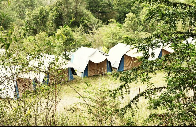 Tent city being built in a flash.