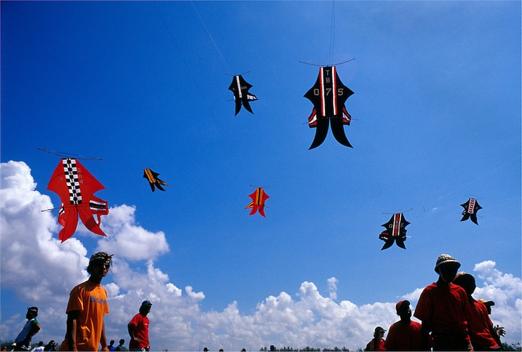 Kites, flags, bali