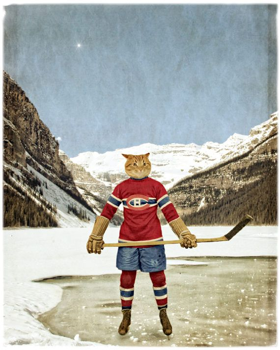Montreal Canadiens Habs Cat Print Cat Art Lake Louise Hockey