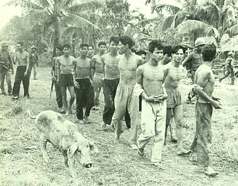 a history of viet cong and the charlie company The 48th viet cong battalion charlie company had arrived in vietnam three months before the my lai massacre murder in the name of war: my lai part 2.