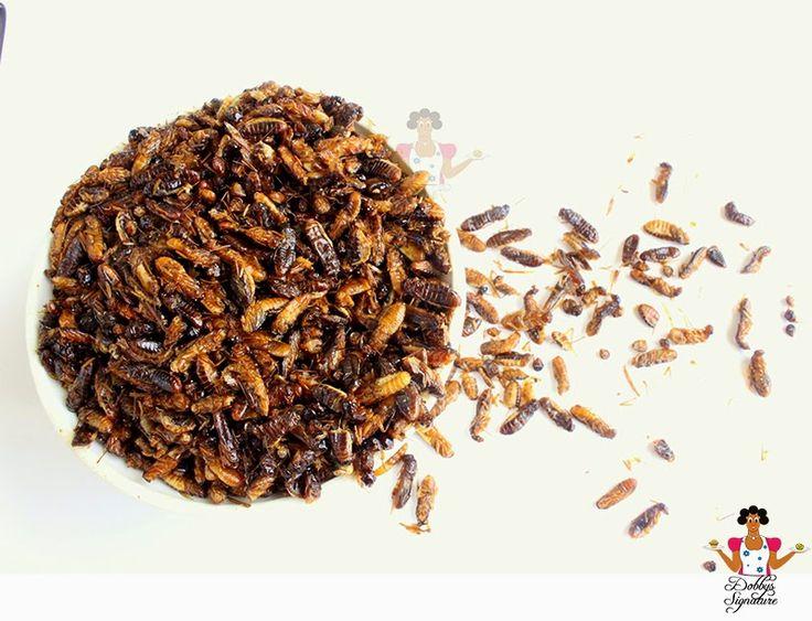 "Dobbys Signature: Nigerian food blog   Nigerian food recipes   African food blog: Edible winged termites ""Aku, Esunsun, Shinge"""