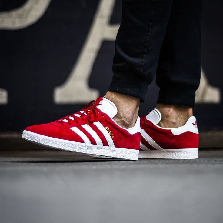 ADIDAS GAZZELLE 10000 @sneakers76 store online www.sneakers76.com @adidasoriginals #adidas #gazzelle ITA - EU free shipping over 50 ASIA- USA TAX FREE ship 29 Photo credit #sneakers76 #teamsneakers76 #sneakers76hq #instashoes #instakicks #sneakers #sneaker #sneakerhead #sneakershead #solecollector #soleonfire #nicekicks #igsneakerscommunity #sneakerfreak #sneakerporn #sneakerholic #instagood