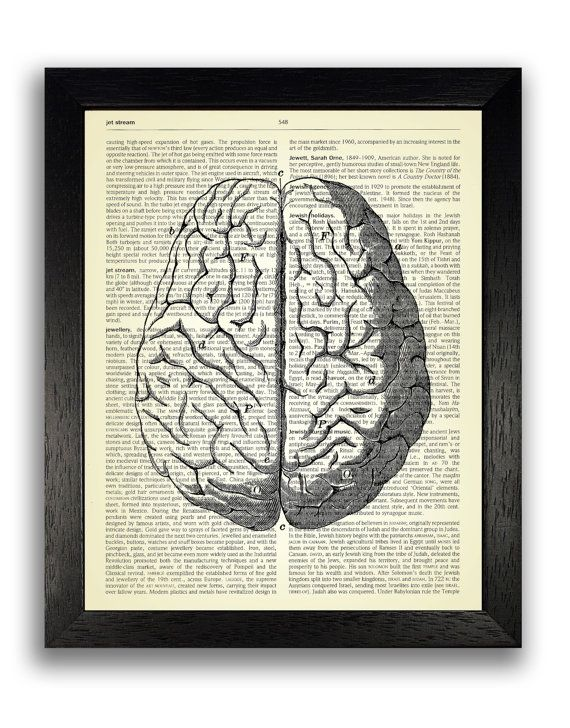 Anatomical Brain Drawing Dictionary Art Print by TopLondonPrints