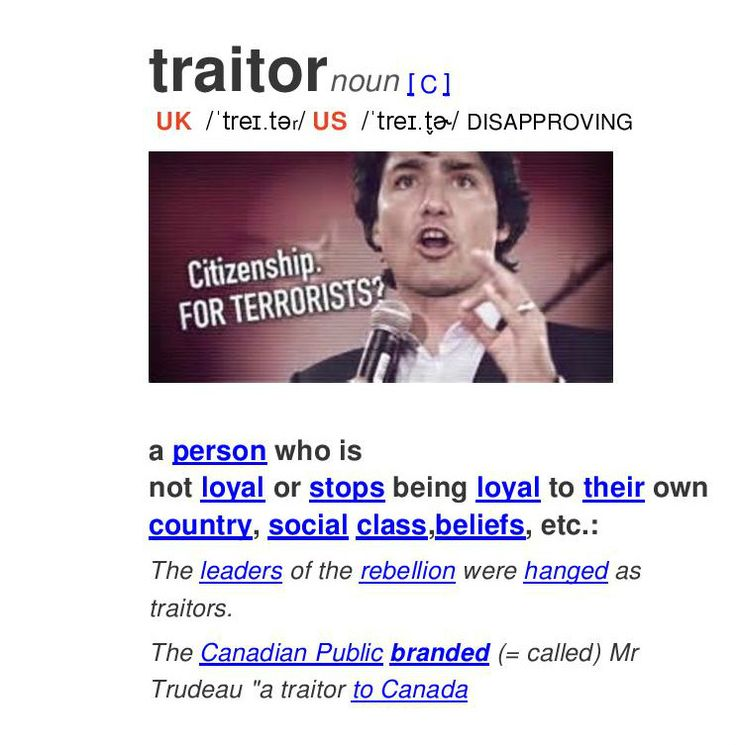 Looked up Traitor in the Canadian Dictionary #canpoli