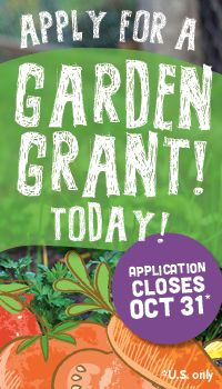 Whole Kids Foundation - Schools - School Garden Program